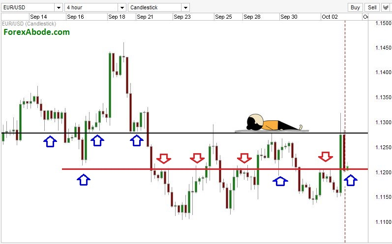Multiple forex charts
