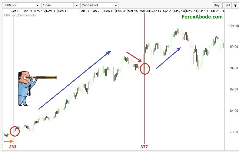 Fibonacci time zones of USD/JPY daily chart from October 2012 to June 2013.