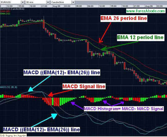 Chart showing MACD and it's signal line.